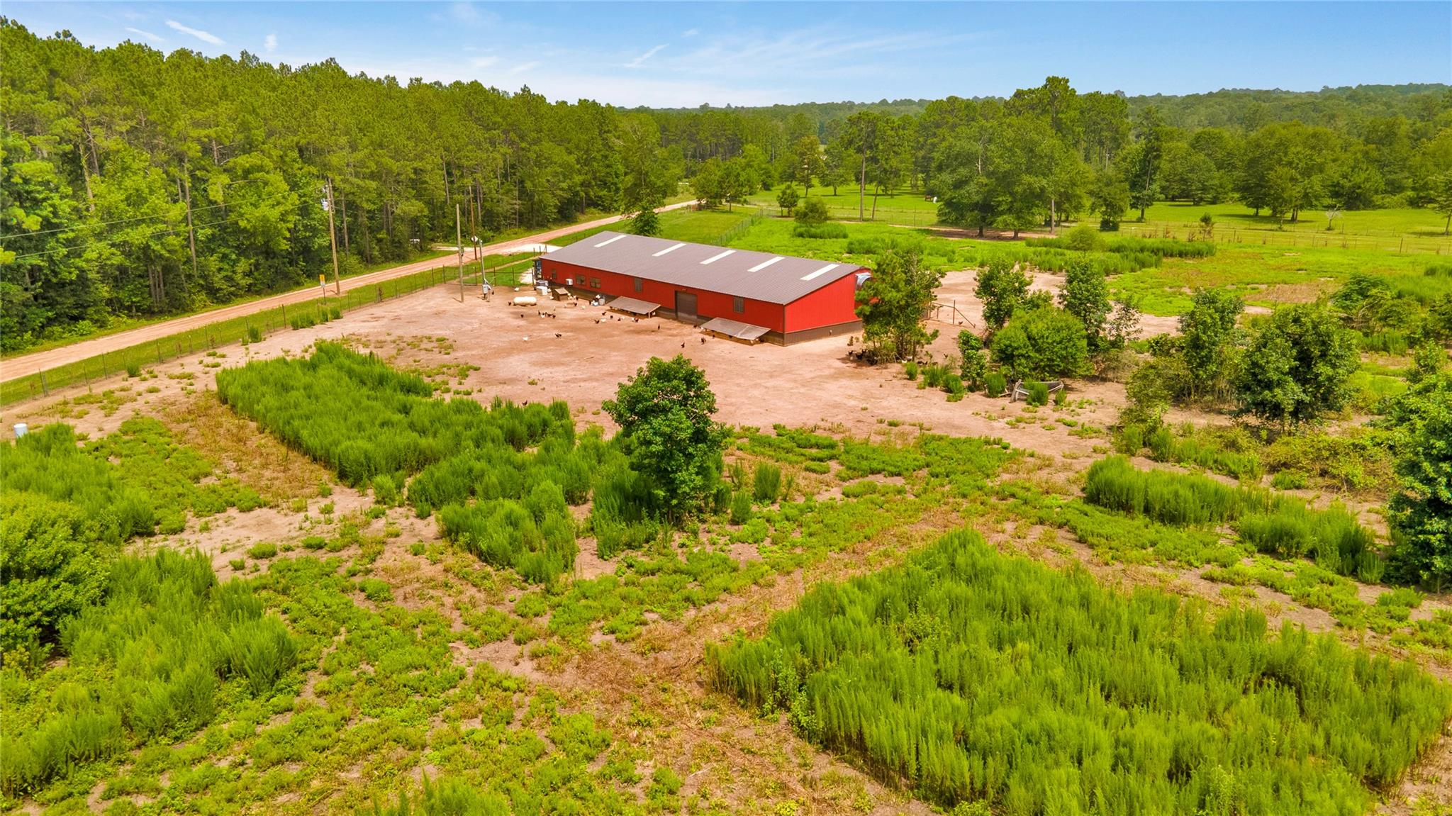 601 Boys Camp Road Property Photo - New Waverly, TX real estate listing
