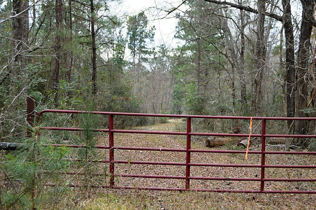 TBD Sylvia Trail, Coldspring, TX 77331 - Coldspring, TX real estate listing