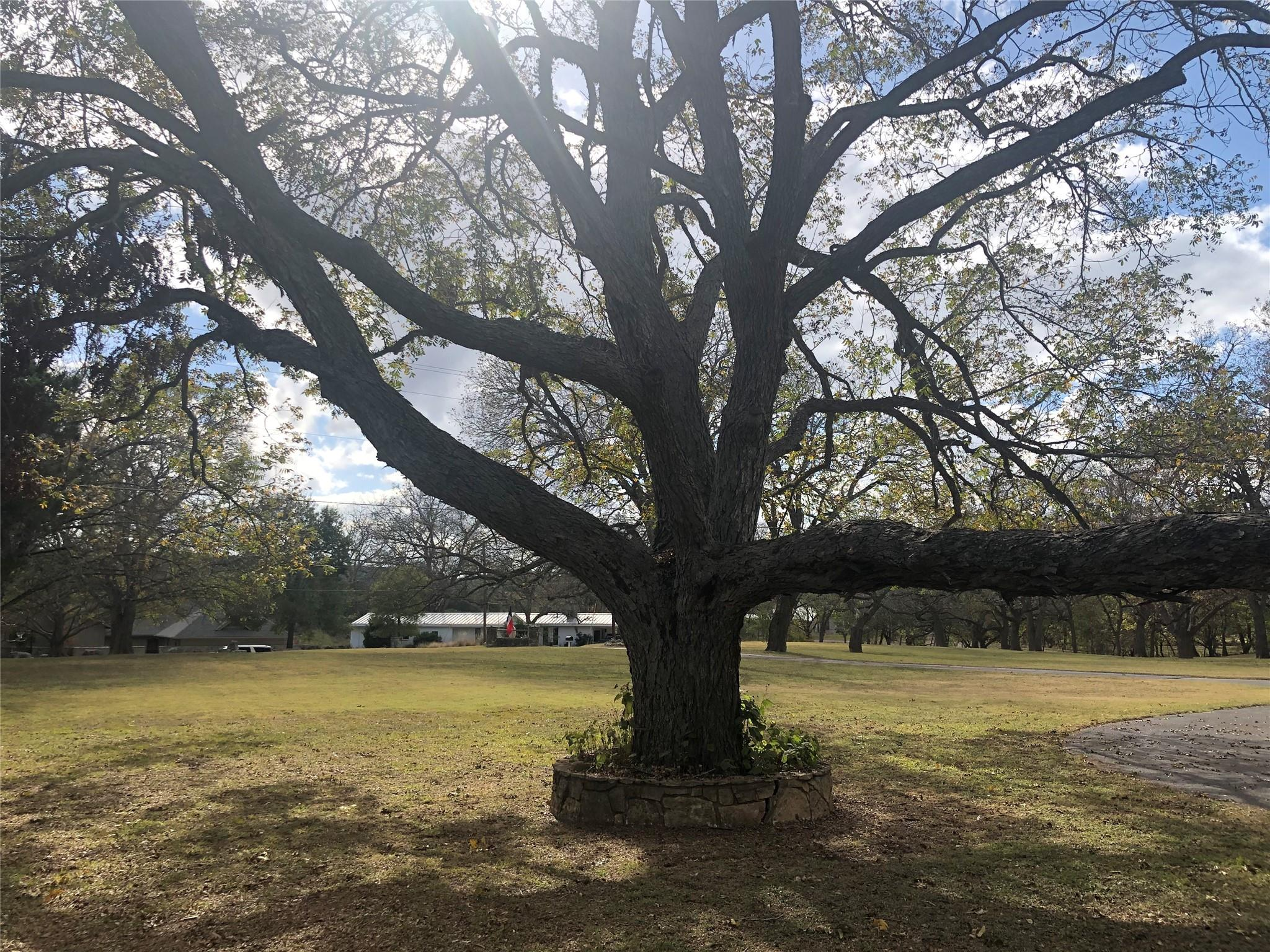 3333 Flite Acres Road Property Photo - Wimberley, TX real estate listing