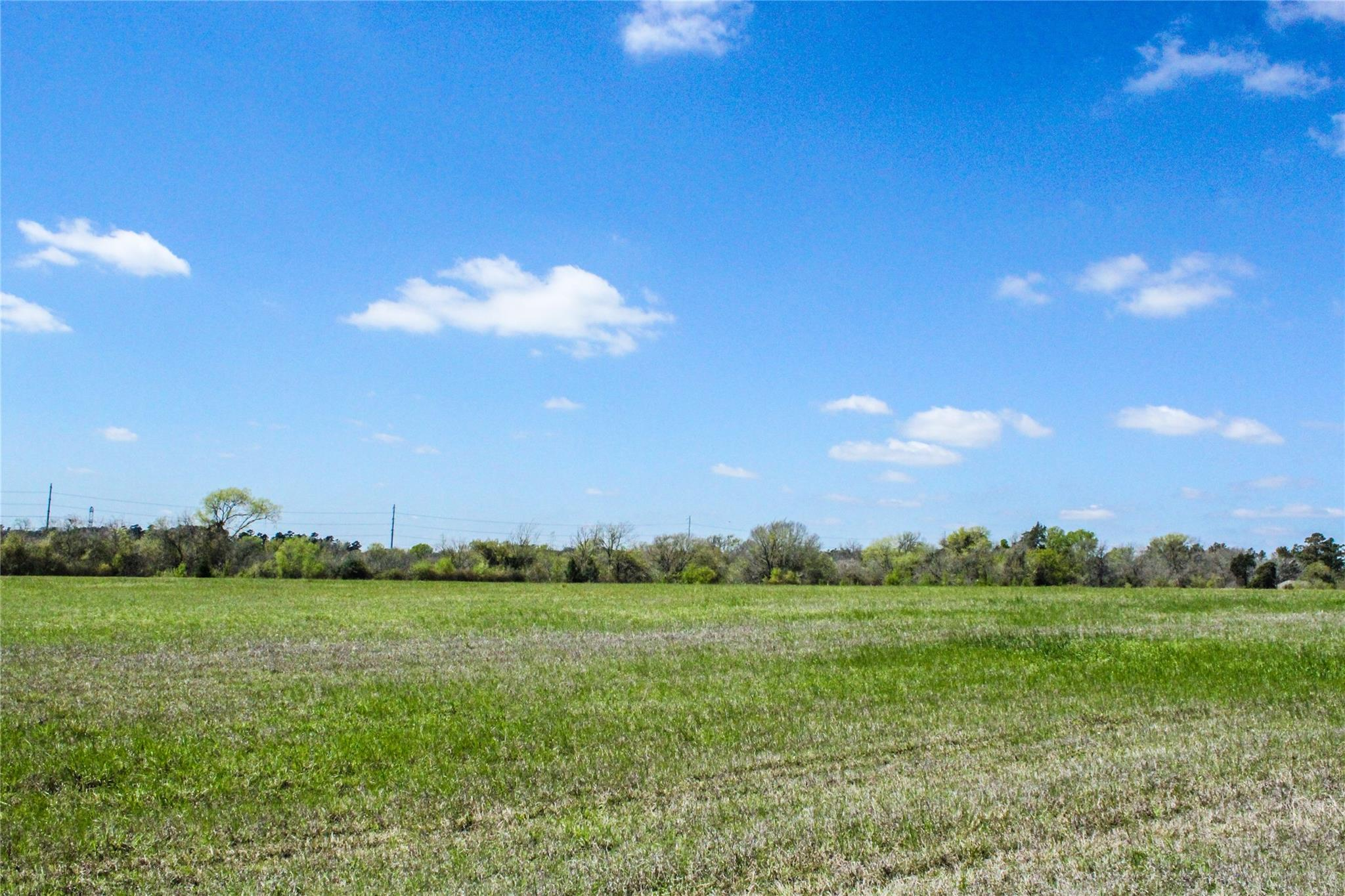 Lot 4 County Road 220 Property Photo