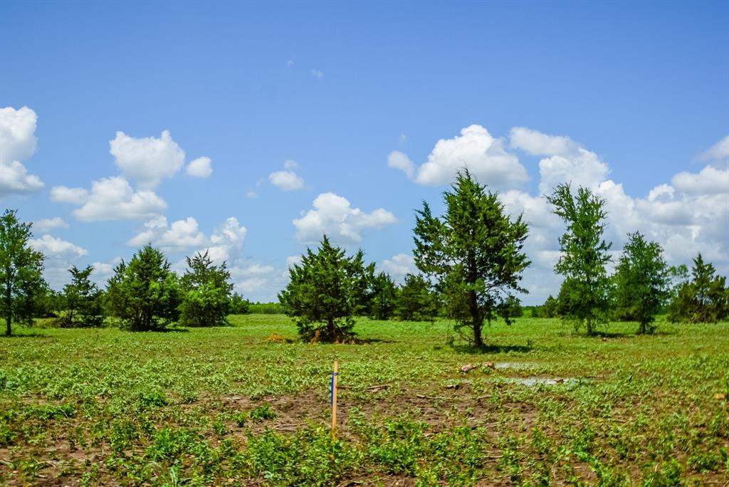 009 County Road 451 Property Photo - Waelder, TX real estate listing
