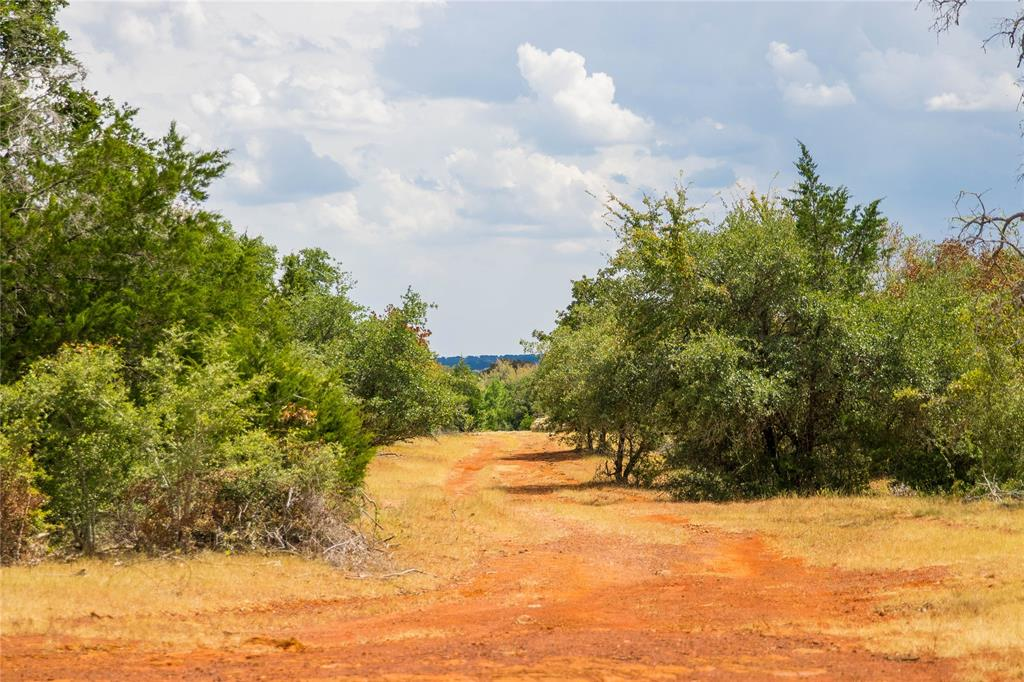 TBD (150 Acres) County Road 430, Dime Box, TX 77853 - Dime Box, TX real estate listing