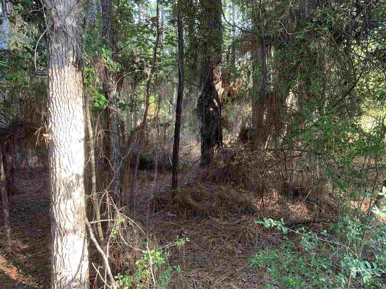 TBD Sweetgum Drive Property Photo - Brookeland, TX real estate listing