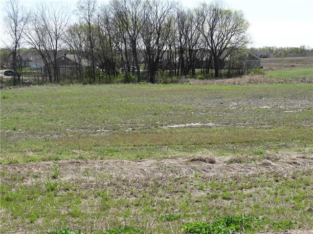 Tract4 Watson Boulevard Property Photo - Kearney, MO real estate listing