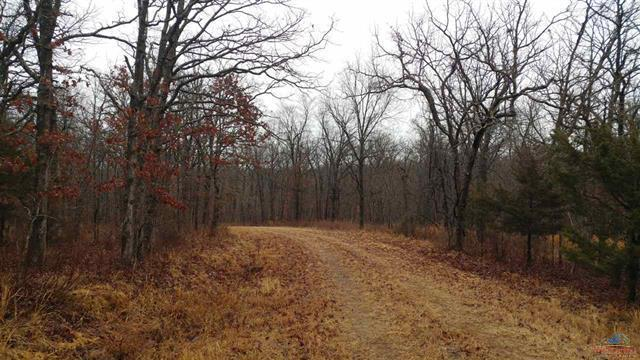 Forte Drive Property Photo - Edwards, MO real estate listing