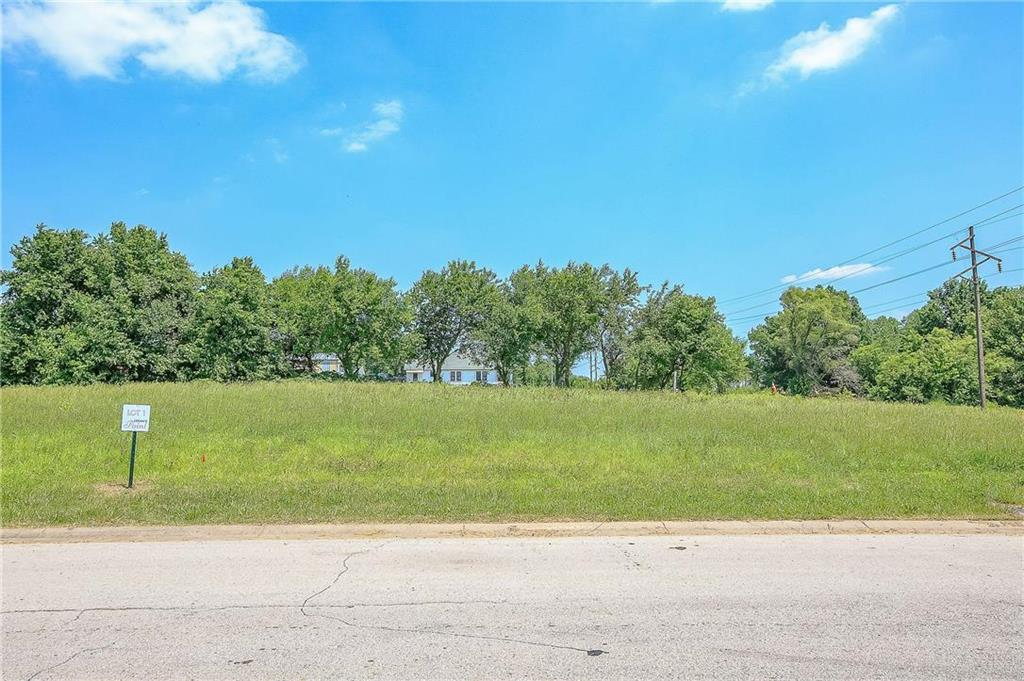 12402 Morgan Street Property Photo - Prathersville, MO real estate listing