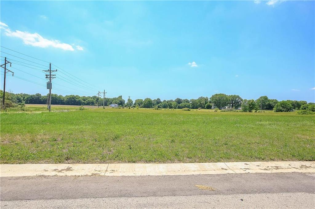 12401 Morgan Street Property Photo - Prathersville, MO real estate listing