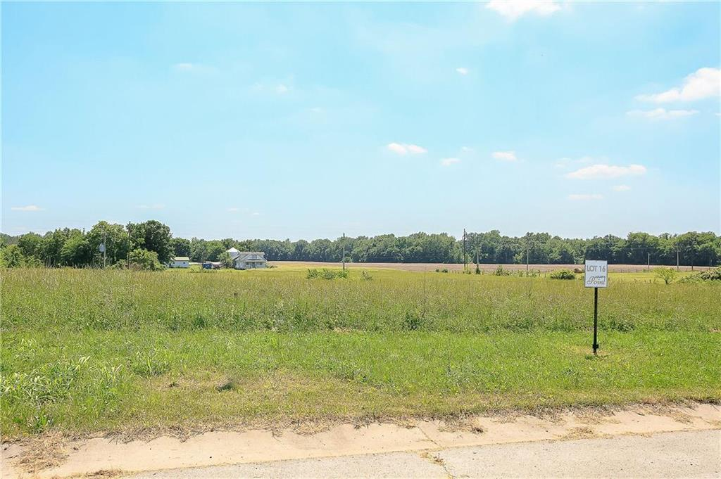 25217 NE 124th Terrace Property Photo - Prathersville, MO real estate listing