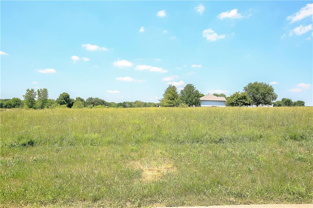 12501 Morgan Street Property Photo - Prathersville, MO real estate listing