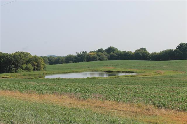 LIV 533 Tract #3 Road Property Photo - Chillicothe, MO real estate listing