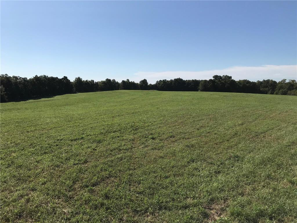 240 St Street Property Photo - Jameson, MO real estate listing