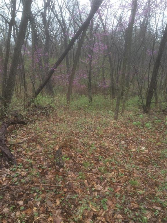 NW 275th Road Property Photo - Holden, MO real estate listing