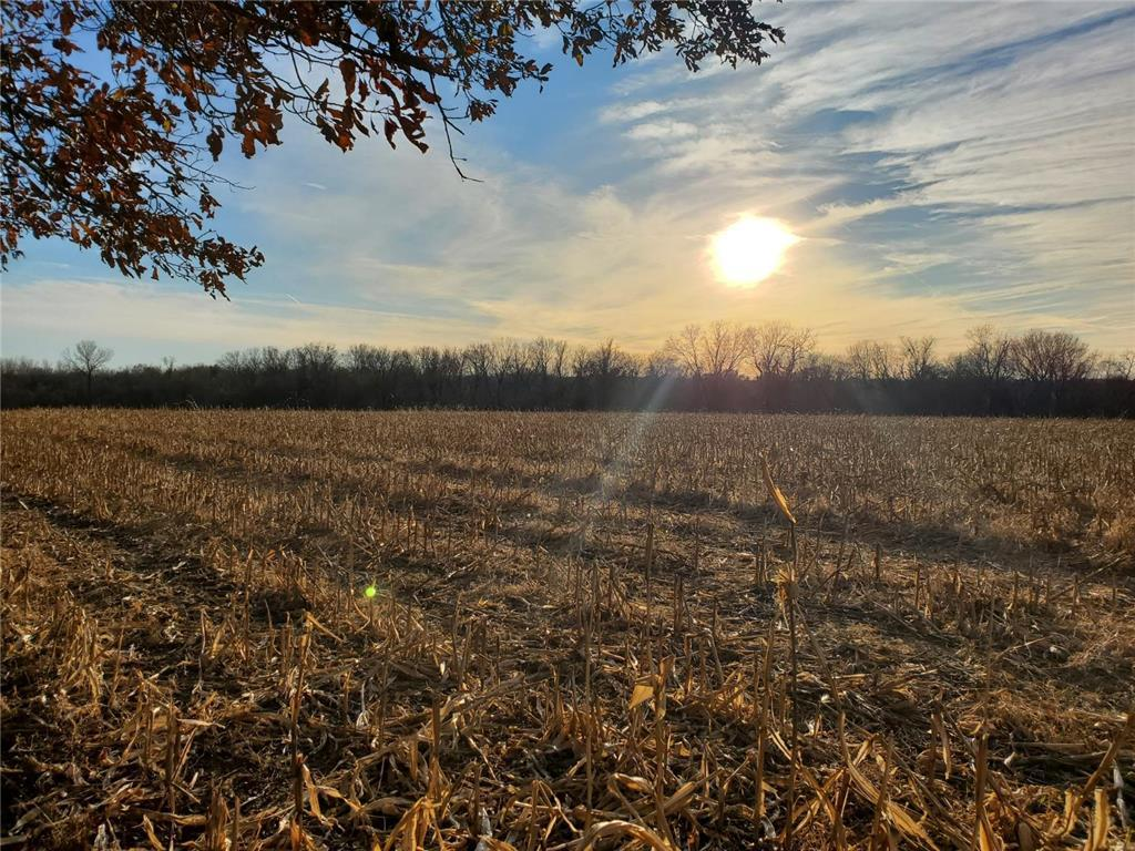 Sweeney Road Property Photo - Grain Valley, MO real estate listing