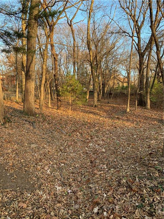 Lot 28 NW Barr Lane Property Photo - Weatherby Lake, MO real estate listing