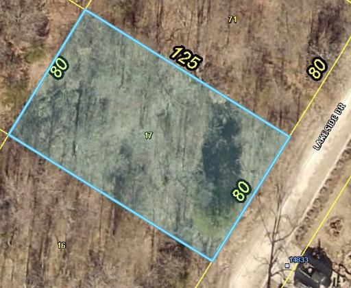 Lakeside Drive Property Photo - Excelsior Springs, MO real estate listing