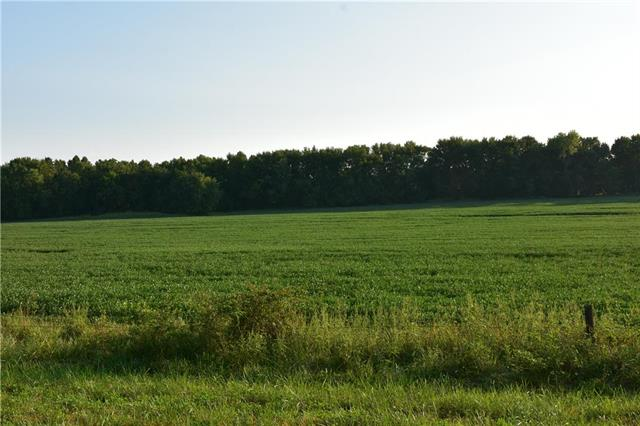 95 Acres M/L Ivory Avenue Property Photo - Jameson, MO real estate listing