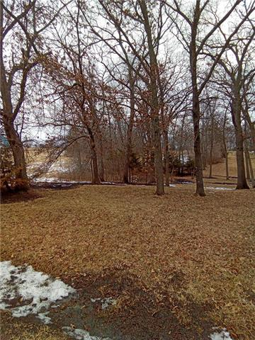 Lake Viking Lot 2542 N/A Property Photo - Gallatin, MO real estate listing