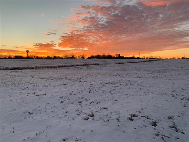9401 Rowen Rd Street Property Photo - De Soto, KS real estate listing