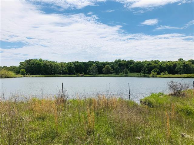 907 SW 401st Road Property Photo - Chilhowee, MO real estate listing