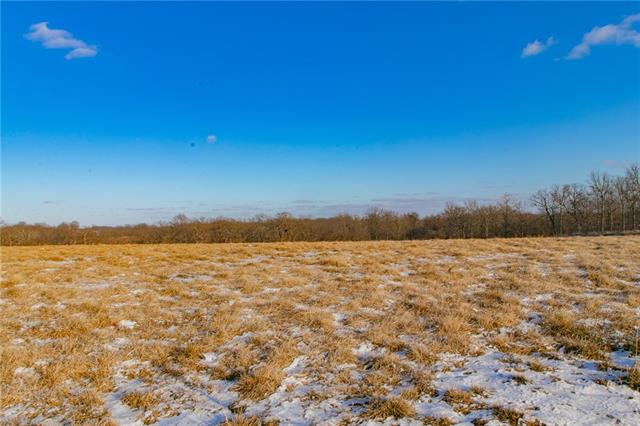 193 SW 131 Highway Property Photo - Holden, MO real estate listing