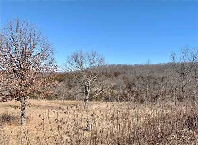 808 SE 800 Road Property Photo - Deepwater, MO real estate listing