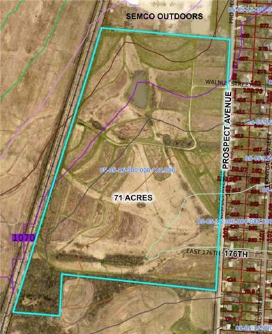 Prospect Avenue Property Photo - Belton, MO real estate listing
