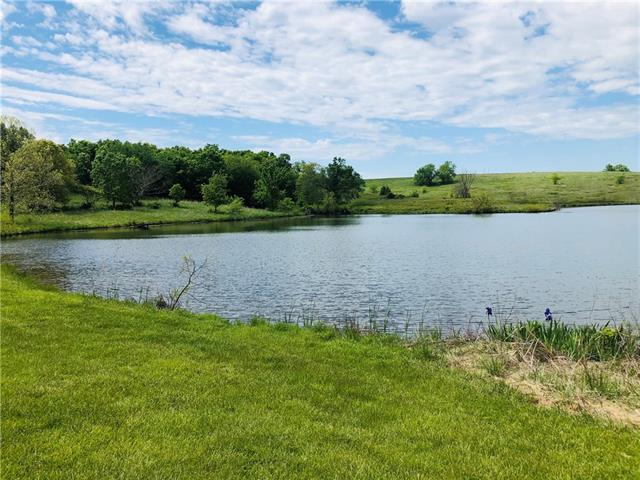 (907) SW 401st Road Property Photo - Chilhowee, MO real estate listing