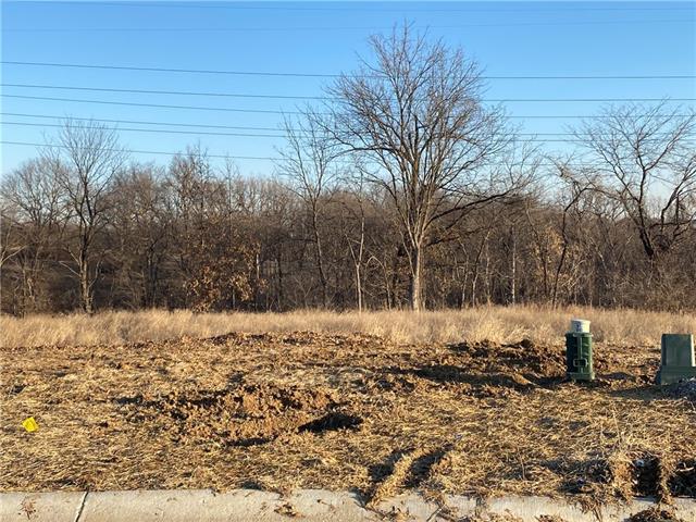 8824 N ELMWOOD Avenue Property Photo - Kansas City, MO real estate listing