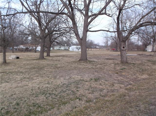 Main Street Property Photo - East Lynne, MO real estate listing