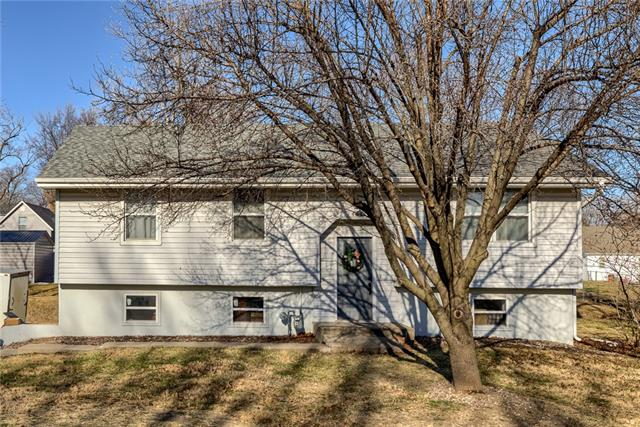 404 Clinton Street Property Photo - Lathrop, MO real estate listing