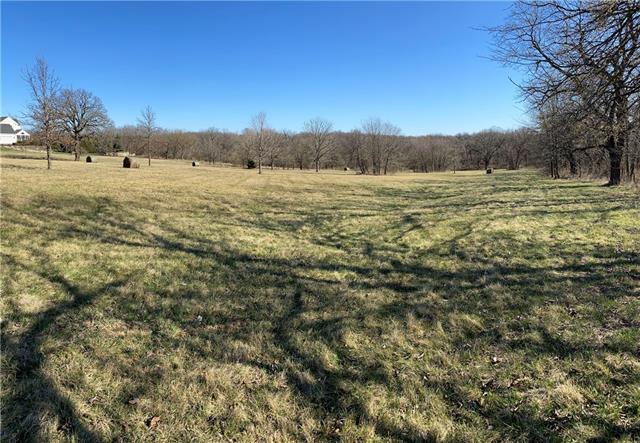 18312 Goddard Street Property Photo - Overland Park, KS real estate listing