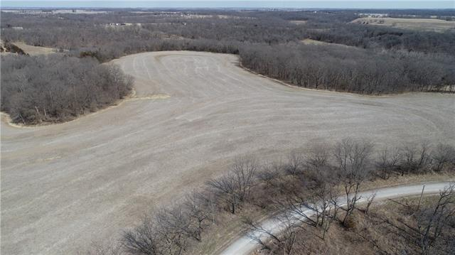 Nitrogen Avenue Avenue Property Photo - Nelson, MO real estate listing