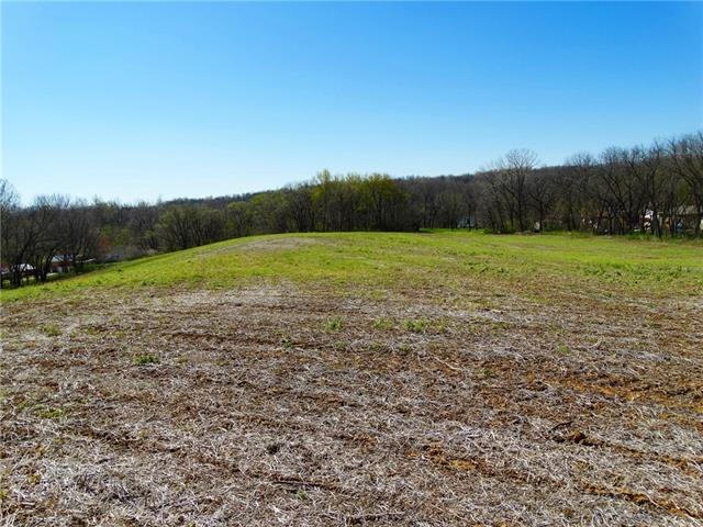 17772 State Rt 45 N Highway Property Photo - Weston, MO real estate listing
