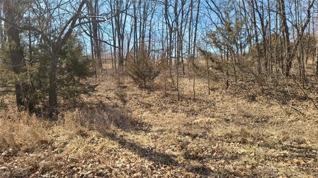 10765 Trail Ridge Drive Property Photo