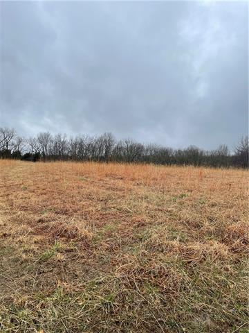 234 S Linn Valley Drive Property Photo - Linn Valley, KS real estate listing