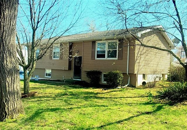 100 Fairview Drive Property Photo - El Dorado Springs, MO real estate listing