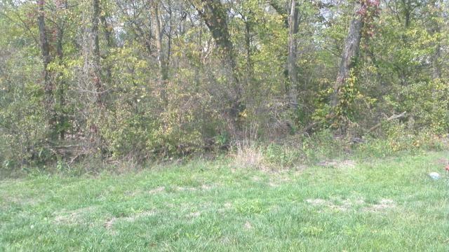 Lot 5 N/A Property Photo - Kansas City, MO real estate listing