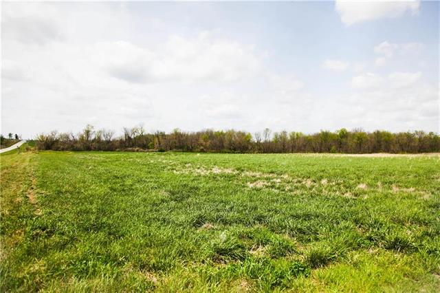 34610 Kolbi Street Property Photo - Drexel, MO real estate listing