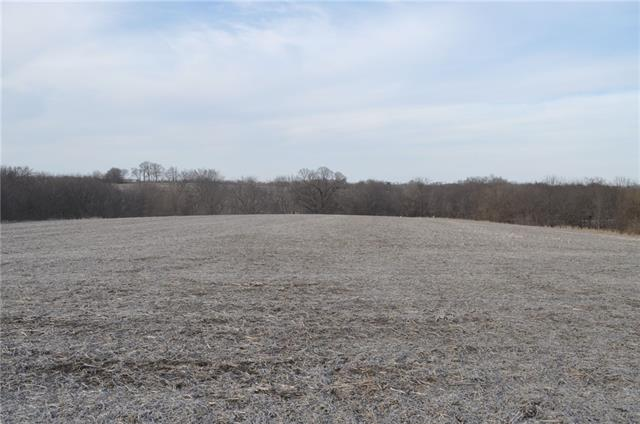 169 Highway Property Photo - Union Star, MO real estate listing