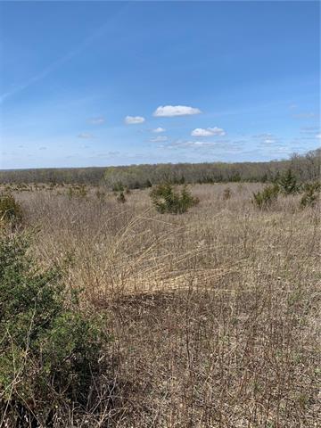 Prairie Avenue Property Photo - Winston, MO real estate listing