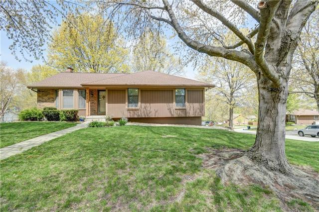 721 SE Shawn Drive Property Photo - Blue Springs, MO real estate listing