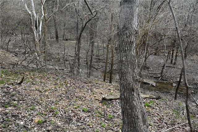 Possum Trot Trail Property Photo 3