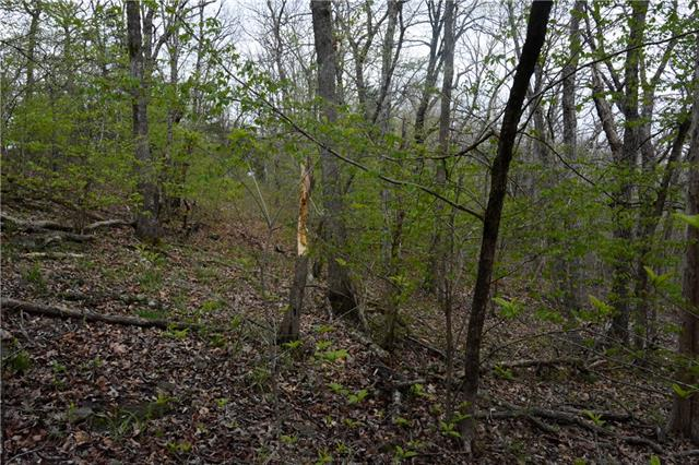 Possum Trot Trail Property Photo 14