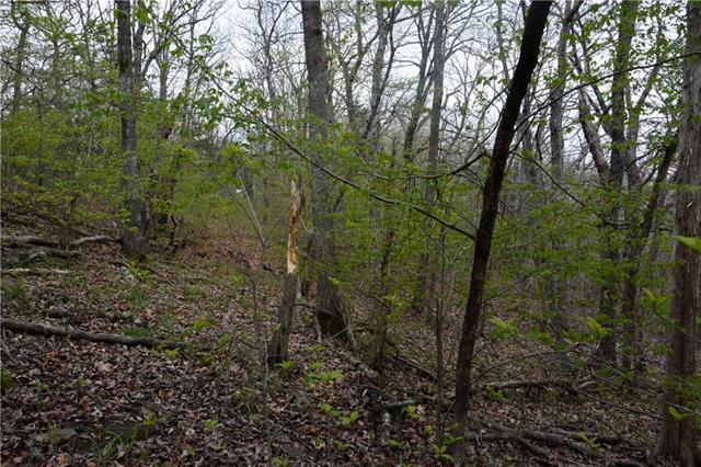 Possum Trot Trail Property Photo 15