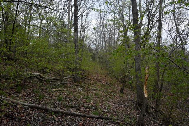 Possum Trot Trail Property Photo 16