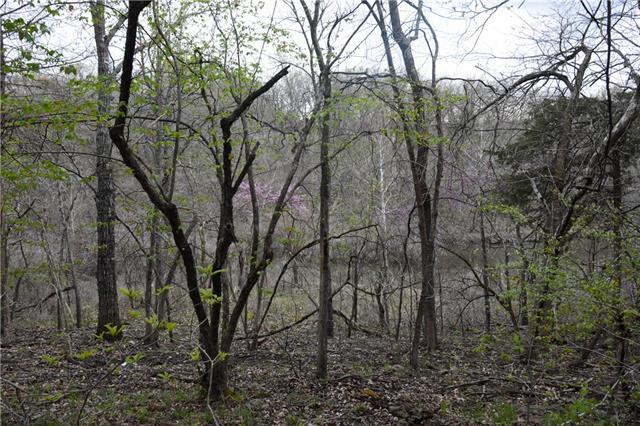 Possum Trot Trail Property Photo 17