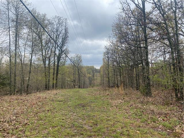 000 7 Highway Property Photo - Climax Springs, MO real estate listing