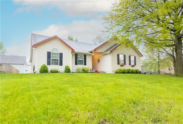 917 SE 11th Street Property Photo - Lee's Summit, MO real estate listing