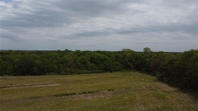 Lot 5 259th Street Property Photo - McLouth, KS real estate listing