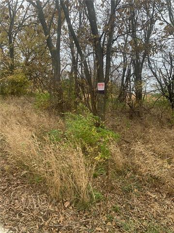 14 Deer Creek Lane Property Photo - Raymore, MO real estate listing
